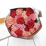 花由 母の日限定 世界品質 カーネーションの花束 カラフルミックス