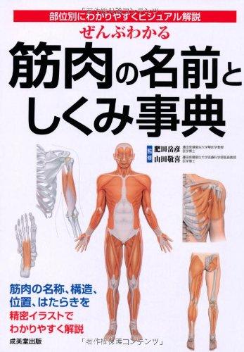 ぜんぶわかる筋肉の名前としくみ事典―部位別にわかりやすくビジュアル解説の詳細を見る