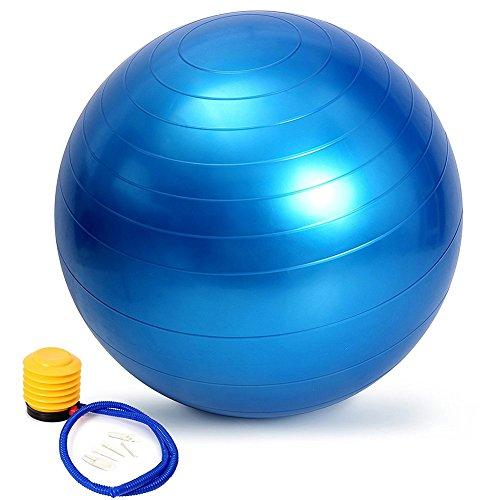バランスボール moonwind 65cm ダイエット ヨガボール エクササイズボール トレーニング アンチバースト仕様 ポンプ付 ブルー クリスマス