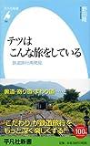 テツはこんな旅をしている: 鉄道旅行再発見 (平凡社新書)