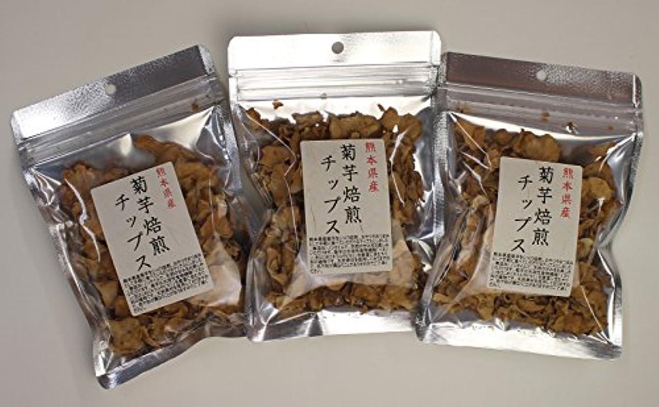 遅らせる悪党ふける菊芋 国産 チップス 熊本県産 30g (3)