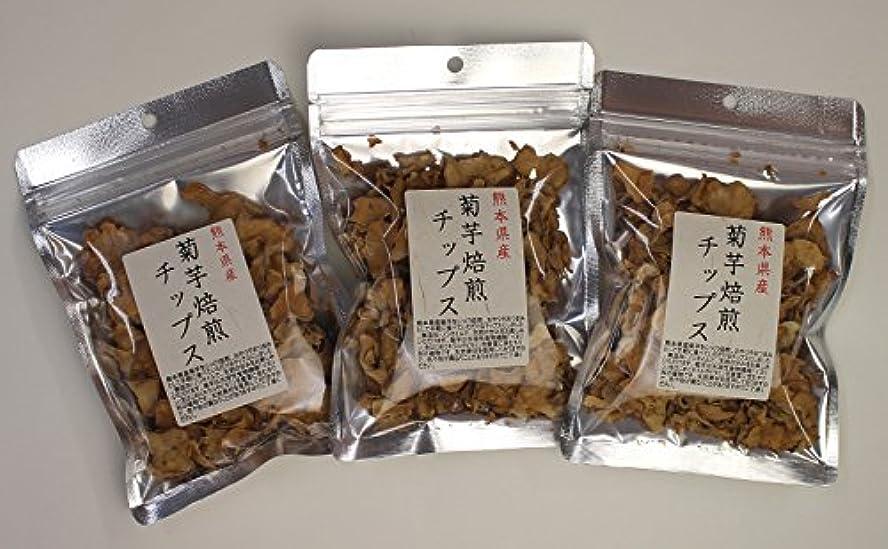 混乱した超えて最も菊芋 国産 チップス 熊本県産 30g (3)