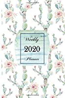 2020 Weekly Planner: 6 x 9 inch 150 Pages Year Months Weeks Calendar, Schedule, and Organizer plus Dot Grid Pages (January 2020 - December 2020) (Cactus)
