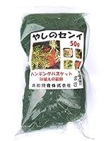 カラーやしのセンイ 50g 緑