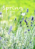 Spring: 春がきた 春夏秋冬 画像
