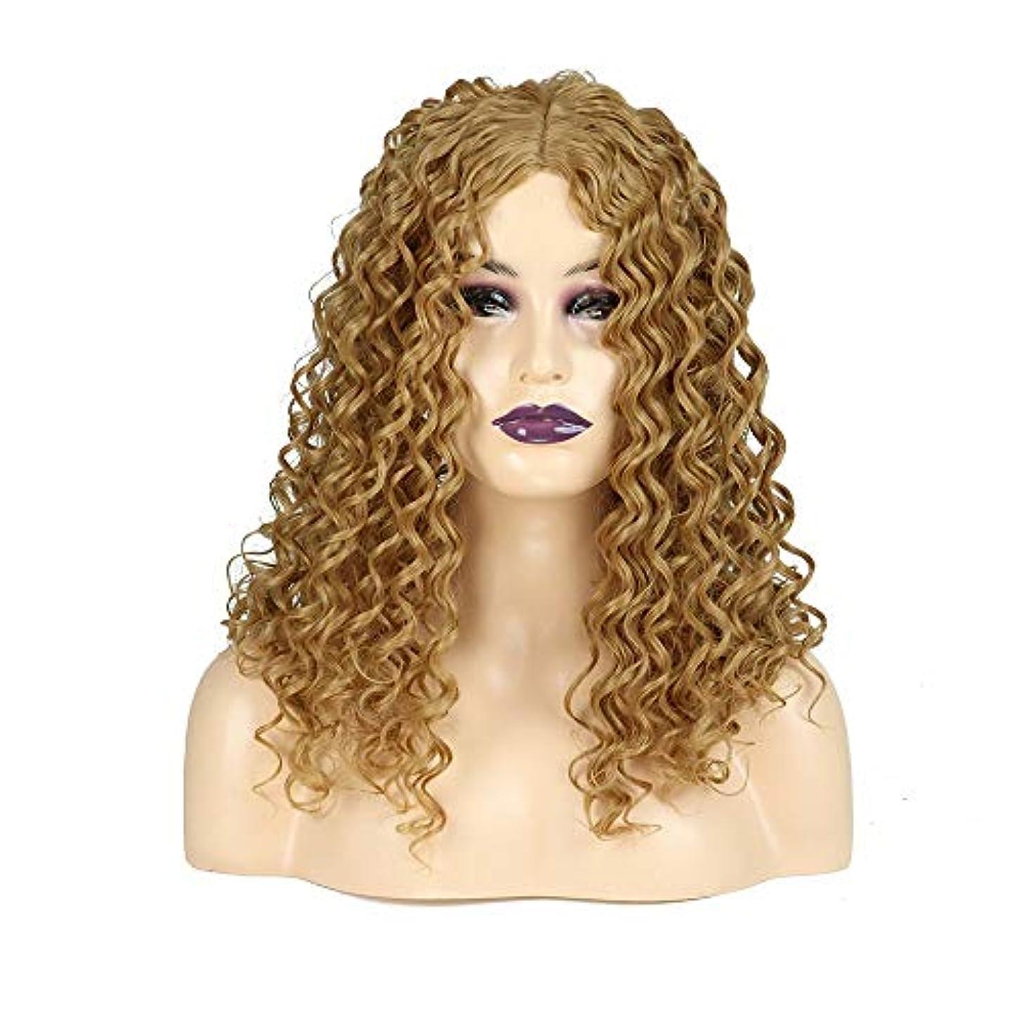 幾何学頑張る影響を受けやすいですWASAIO ブロンドの長い巻き毛のかつらアフリカの小さな波熱安全な合成繊維アクセサリースタイルファイバー用女性の毎日のドレス (色 : Blonde)