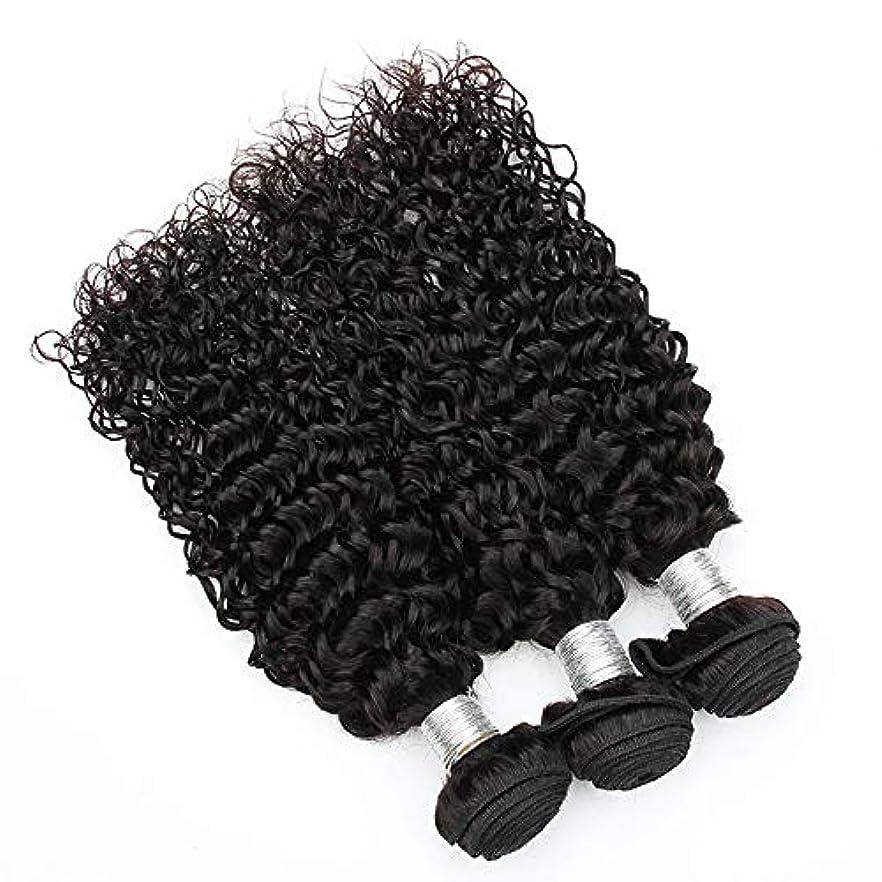 災害ダイジェスト再発するMayalina ナチュラルカラーウォーターウェーブヘアエクステンションブラジル100%未処理の人間の髪織り(1バンドル、10インチ-28インチ)小さな巻き毛のかつら (色 : 黒, サイズ : 14 inch)