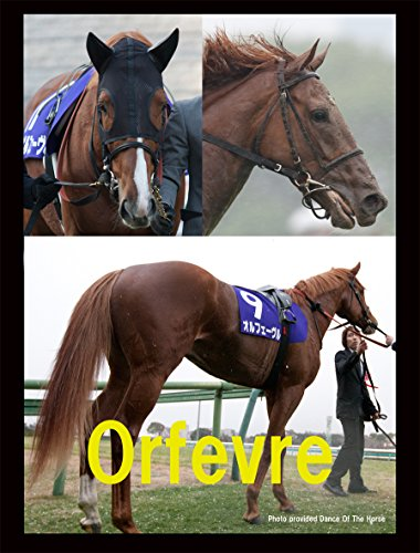 競馬 BIGタペストリー 90cm×120cm オルフェーヴ...