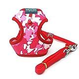 Puppy かわいい 迷彩柄 小型犬 用 胸あて式 ハーネス リード セット (ピンク, M)