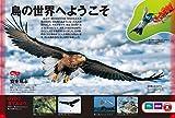 【DVD付】鳥 (学研の図鑑LIVE) 3歳~小学生向け 図鑑 画像