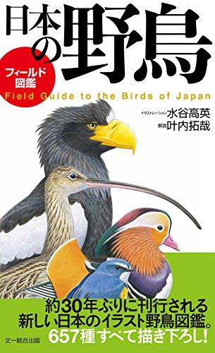 フィールド図鑑 日本の野鳥