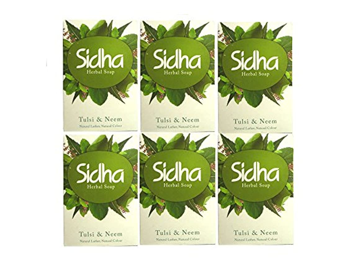 SIHDH Herbal Soap Tulsi & Neem シダー ハ-バル ソープ 75g 6個セット