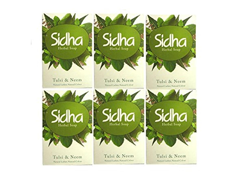 宙返り蒸接尾辞SIHDH Herbal Soap Tulsi & Neem シダー ハ-バル ソープ 75g 6個セット
