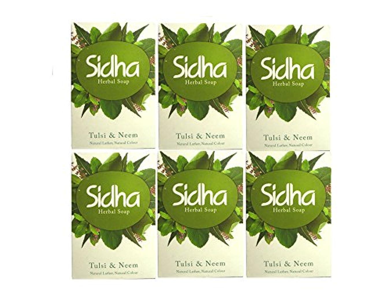 事顧問一掃するSIHDH Herbal Soap Tulsi & Neem シダー ハ-バル ソープ 75g 6個セット