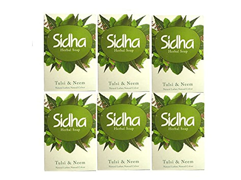 懲戒ポータルいくつかのSIHDH Herbal Soap Tulsi & Neem シダー ハ-バル ソープ 75g 6個セット