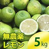 国産無農薬レモン5kg(国産 ノーワックス 防カビ剤不使用 5kg)