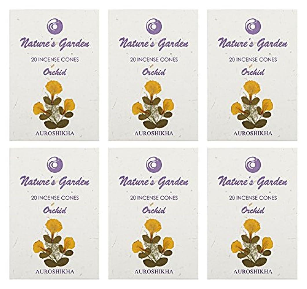 アフリカ人引き渡す呼びかけるAuroshikha Nature 's Garden Orchid Incense Cones、120 – セットof 6
