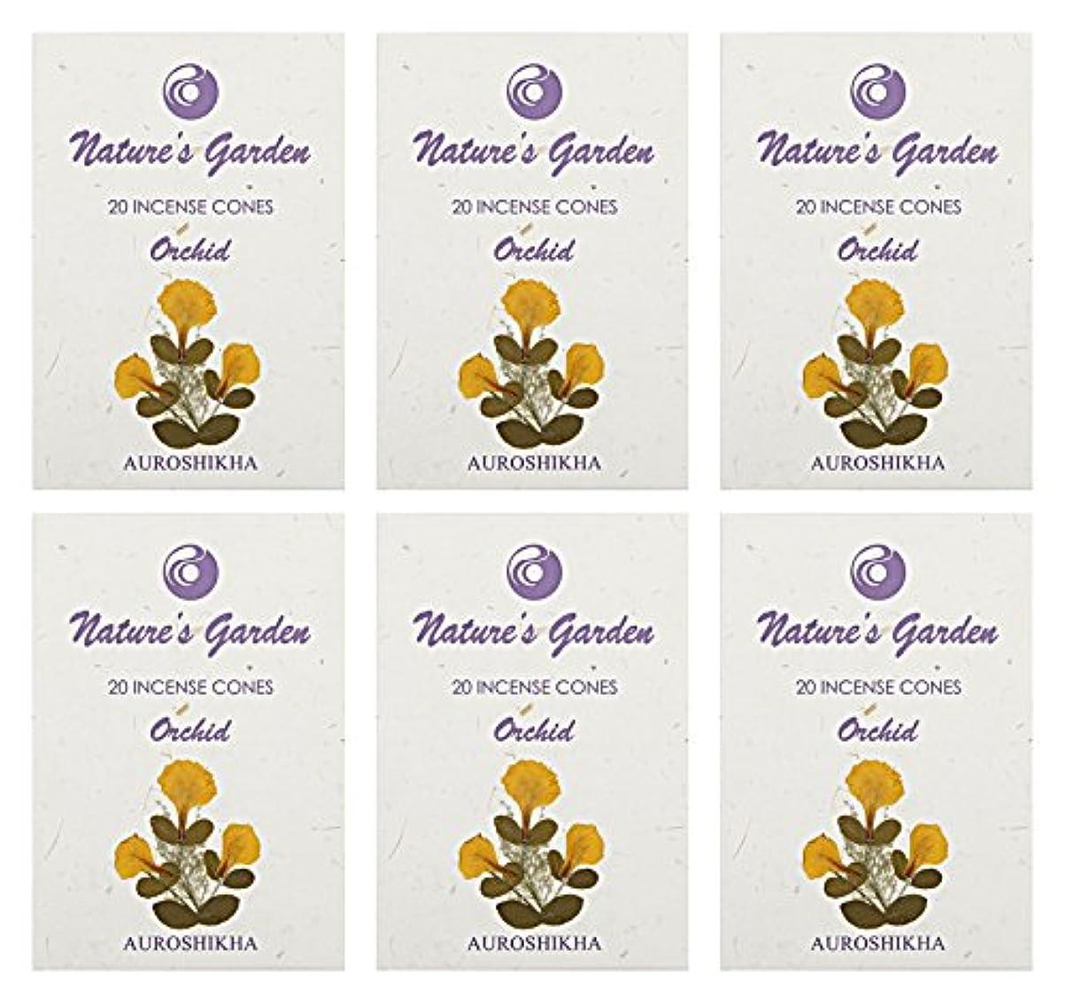 Auroshikha Nature 's Garden Orchid Incense Cones、120 – セットof 6