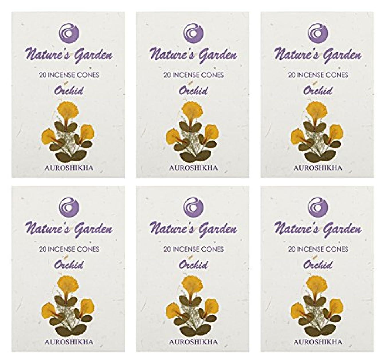 明快銃カレンダーAuroshikha Nature 's Garden Orchid Incense Cones、120 – セットof 6