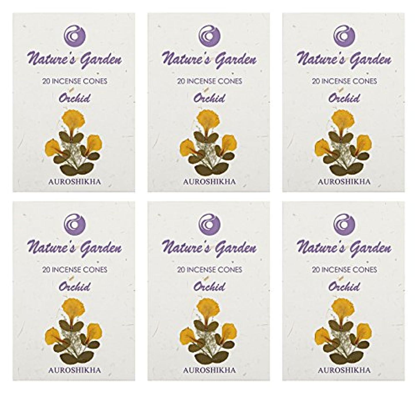 革命的権威判定Auroshikha Nature 's Garden Orchid Incense Cones、120 – セットof 6