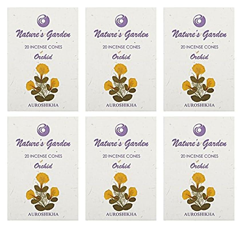 不注意消費者シネマAuroshikha Nature 's Garden Orchid Incense Cones、120 – セットof 6