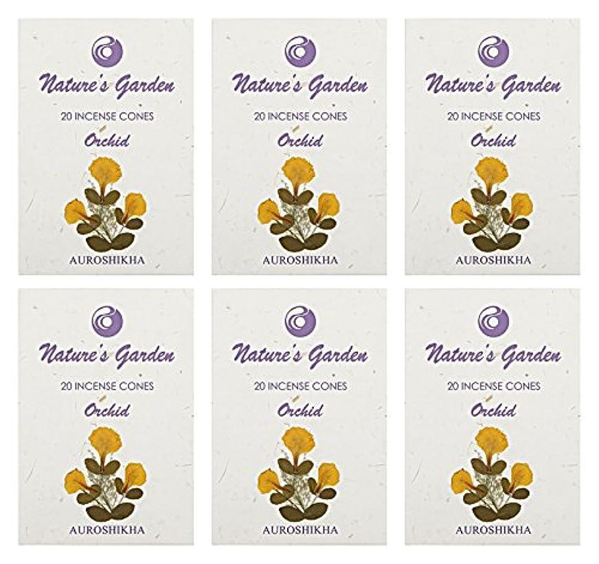 ただやる句気味の悪いAuroshikha Nature 's Garden Orchid Incense Cones、120 – セットof 6