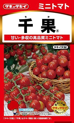 タキイ種苗 ミニトマト 千果