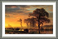 "Alonlineアート–Western Kansas水牛Albert Bierstadt Framedのコットンキャンバスホーム装飾壁アート博物館品質フレームをハングアップする準備フレーム 27""x16"" - 68x41cm (Framed Cotton Canvas) VF-BDT101-FCC0F13-1P1A-27-16"