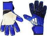 adidas(アディダス) サッカー ゴールキーパー グローブ ACE TRANS プロ BPG75 ブルー×コアブラック×ホワイト(AZ3691) 8