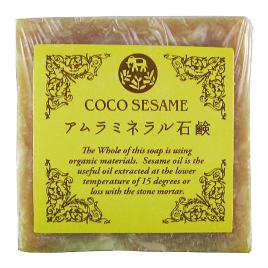 ココセサミ アムラミネラル石鹸 20g