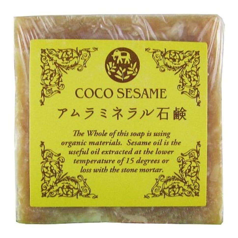 ベストパックタヒチココセサミ アムラミネラル石鹸 20g