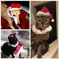 amzmonnsuta 2個入り クリスマス 帽子 可愛い ペット用品 サンタ ハット 首輪・ベル付き クリスマスプレゼント 猫・犬 キャップ・襟・服 パーティ コスプレ