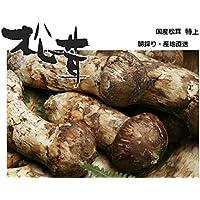 松茸 国産松茸 特上(蕾・中開き)約150g 会津産・山形県産