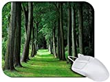 Amazon.co.jpSnoogg Walking Way In Forest Non Slip Rubber Mouse Pad
