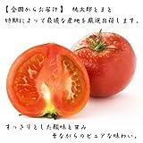 美味しい野菜 旬の産地からお届け 桃太郎トマト 4kg入箱
