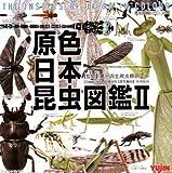 ガシャポン 原色日本昆虫図鑑 Ⅱ ハグロトンボ 単品