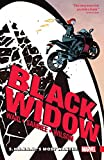 Black Widow Vol. 1: S.H.I.E.L.D.'s Most Wanted (Black Widow (2016-2017)) (English Edition)