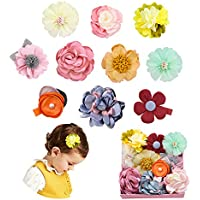 Baby Girls Hair Bows Clips with Alligator Clips Hair Barrettes Accessory for Fine Hair Infant Toddlers Kids