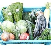 産地直送蒜山高原(岡山)の高原減農薬野菜7~9種セット地元農家さんが毎日新鮮で旬な野菜をご用意いたします!西日本野菜