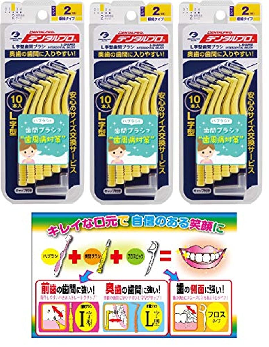 クラシック機動ウォーターフロント【Amazon.co.jp限定】DP歯間ブラシL字型10本入サイズ2 3P+リーフレット