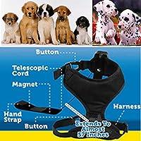 Calops引き込み式犬用リード線、引き込み式犬の首輪とリードセットに1個、360°フリーフィット小型/中型犬、10〜35LBS(S/M)の犬用に設計