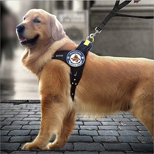 犬用ハーネス リード 2点セット EZOM 中型犬 大型犬 おしゃれ ハーネスリードセット ショート&ロングリード ドッグ 胴輪 牽引ロープ しつけ用品 丈夫 出かけ ペット用品 人気 (L)