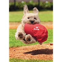 White Dog Running Withキャップ–Avanti子犬父の日カード