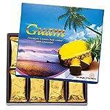 [グアムお土産] グアム パイナップルチョコレートクッキー 1箱 (海外 みやげ グアム 土産)