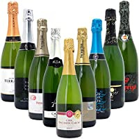本格シャンパン製法だけの厳選泡9本セット((W0S908SE))(750mlx9本ワインセット)