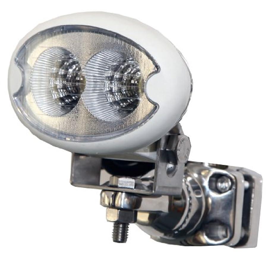 土砂降り不測の事態反毒REGAR MARINE(リガーマリン) マリン用LED LED-6W P M8 10252