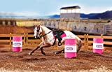 Breyer Classics Barrel Racing Horse Toy Set