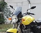 選べる2色 汎用 クリアー ブラック スクリーン 風防 メーターバイザー カウル 【ADVANTAGE】 透明 黒 スモーク (クリアー)
