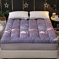 フェザーベルベットステレオ畳マットレス、サンディング折りたたみマットレスシングルダブルパッド入りのクッション、吸湿、抗しわ、学生冬の寝具 (Color : C, Size : 100x200cm)