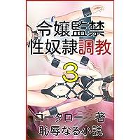 令嬢監禁 性奴隷調教3 (恥辱なる小説)